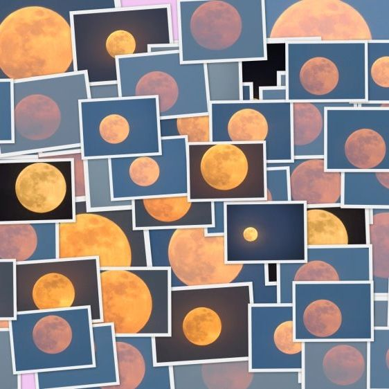 Hunter's Moon collage by our friend Kausor Khan in India