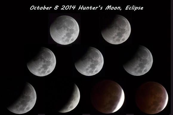Eclipse mosaic by Don Hartsaw