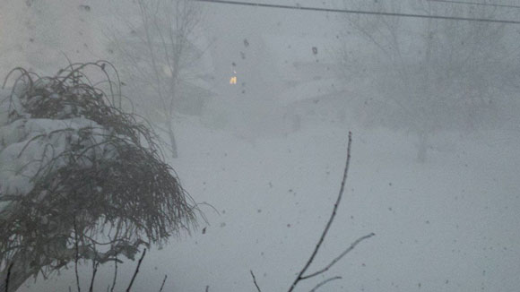 White out conditions in south Buffalo, NY on November 18, 2014. Image appears courtesy of Kelly LaBella.
