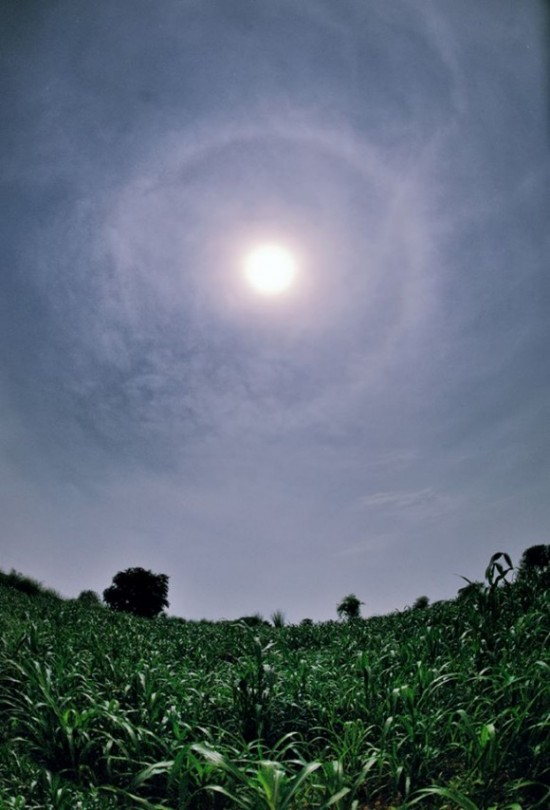 Abhinav Singhai captured this halo above wheat fields.  Visit Abhinav Singhai's Flickr page