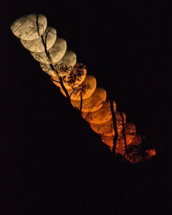 Setting moon on November 2, 2014 by Ken Christison