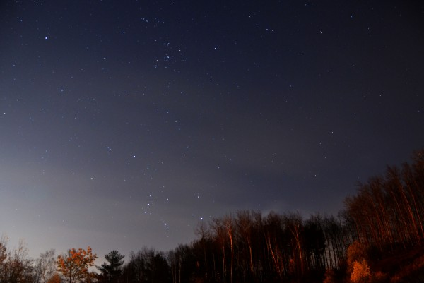 Orion is ascending over the treetops in this photo by Patricia Evans.  See more photos by Patricia on her website.