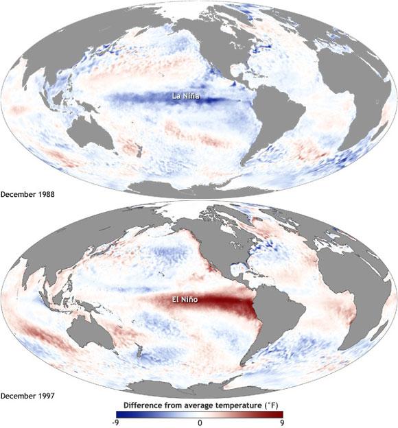 Typical sea surface temperature anomalies during La Nina and El Nino events. Image Credit: NOAA.