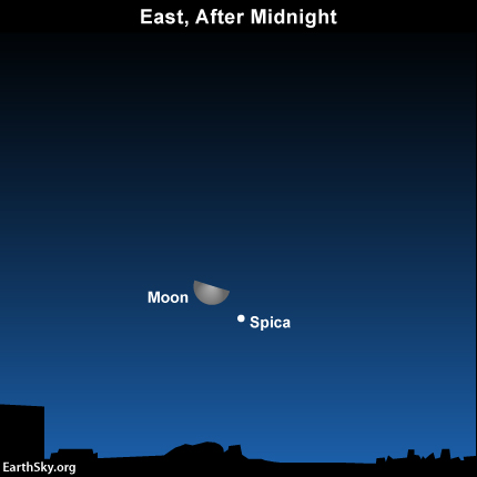 The bright object near the moon Saturday morning isn't one of the 5 planets.  It's a star, Spica in the constellation Virgo.