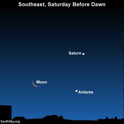 Let the waning crescent moon be your guide to the planet Saturn and the star Antares before sunrise on Saturday, January 17.