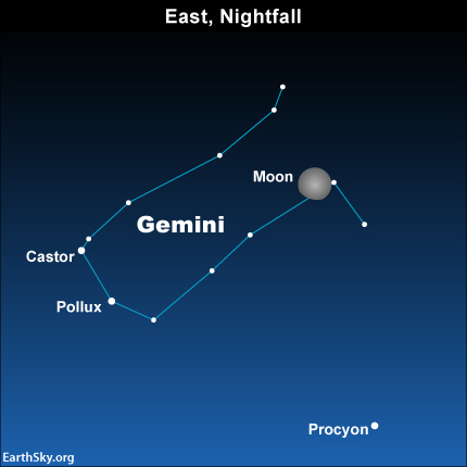 2015-jan-31-gemini-castor-pollux-procyon-moon-night-sky-chart