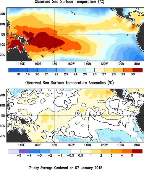 Observed sea surface temperatures and anomalies for the Eastern Pacific in January 2015. Image via NOAA