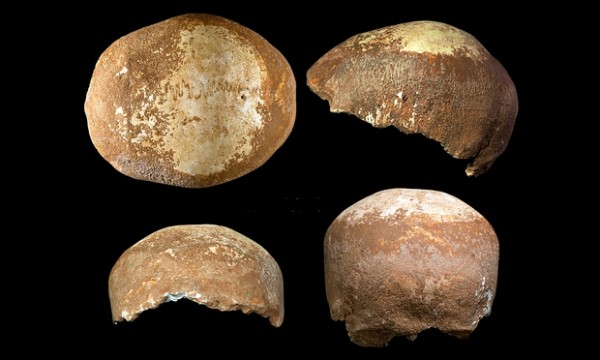 Views of the human skull, with missing jaw, found in western Galilee, northern Isreal and estimated at 55,000 years old. Photograph: Tel Aviv University and University of Vienna