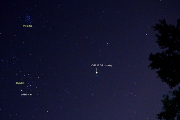 To find Comet Lovejoy, look for the V-shaped Hyades star cluster.  The brightest star in the V is reddish Aldebaran.  Photo taken January 11, 2015 by Annie Lewis in Madrid, Spain.  Thank you, Annie!