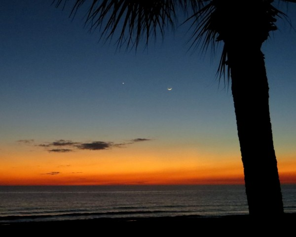 Planet Venus and young moon on January 21, 2015, as captured by Kathy Emmett Palmer in Panama City Beach, Florida.