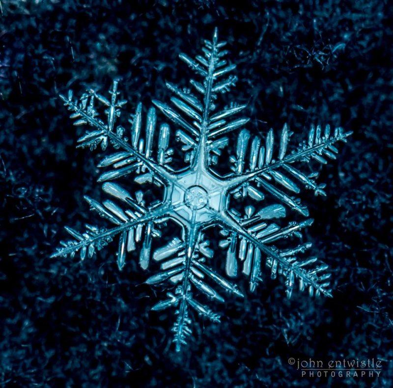 best photos snowflakes earth earthsky