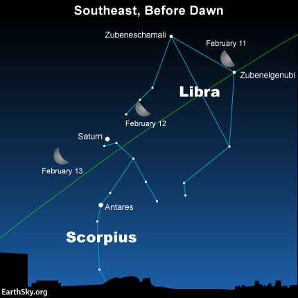If you're up before dawn, let the moon introduce you to the constellations Libra and Scorpius during the next few days.