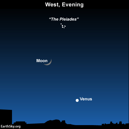 On Monday night - March 23, 2015 - the moon is in between Venus and the famous Pleiades star cluster. Read more.