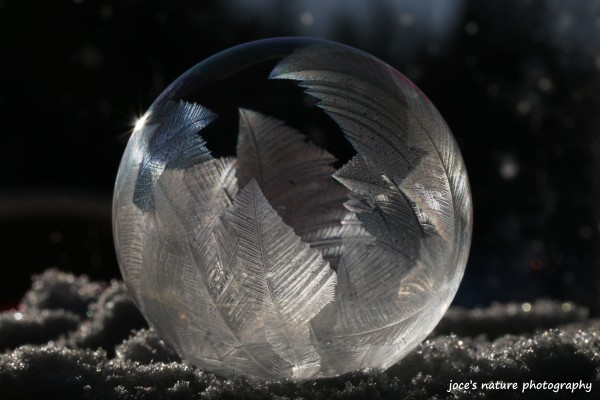 Unprocessed version of a frozen bubble by Jocelyne Dupuis.