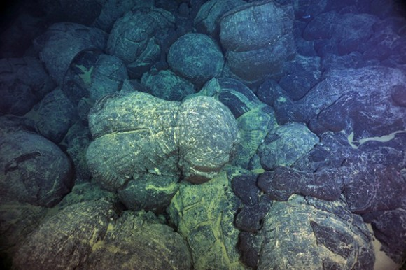 Magma from undersea eruptions congealed into forms known as pillow basalts on the Juan De Fuca Ridge, off the U.S. Pacific Northwest. A new study shows such eruptions wax and wane on regular schedules. Image credit: Deborah Kelley/University of Washington