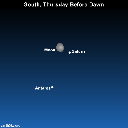 2015-march-11-saturn-antares-moon-night-