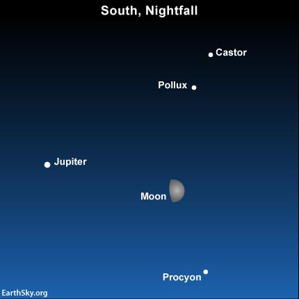 2015-march-28-jupiter-castor-pollux-procyon-night-sky-chart