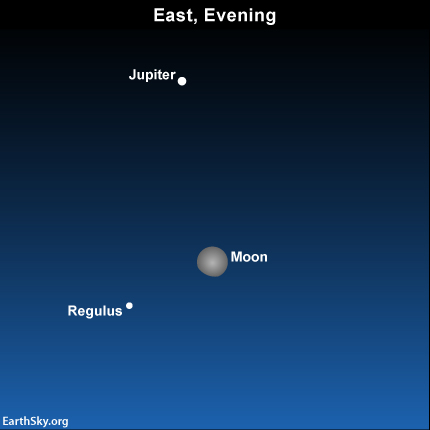 The moon, Jupiter and Regulus on March 3. 2015. Read more