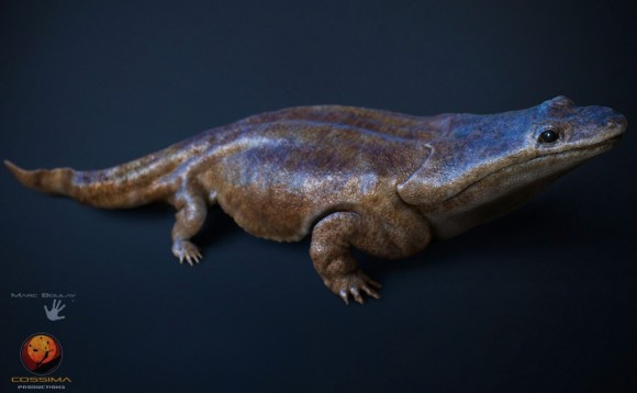 Is it a bird? Is it a plane? No, it's super salamander!