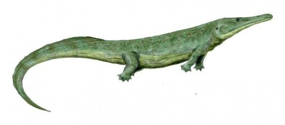 Prionosuchus: even bigger and badder than super salamander. Image credit:Wikimedia