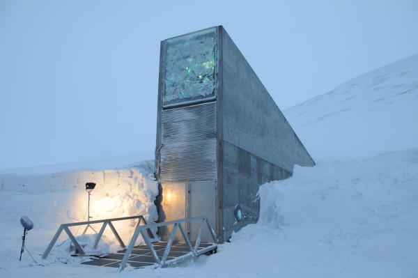View larger. | The Svalbard Global Seed Vault officially opened on February 26, 2008.  The roof and vault entrance are filled with highly reflective stainless steel, mirrors, and prisms, designed to reflect polar light in the summer months, making the seed vault visible from a distance.  Image via Norway's Ministry of Agriculture and Food