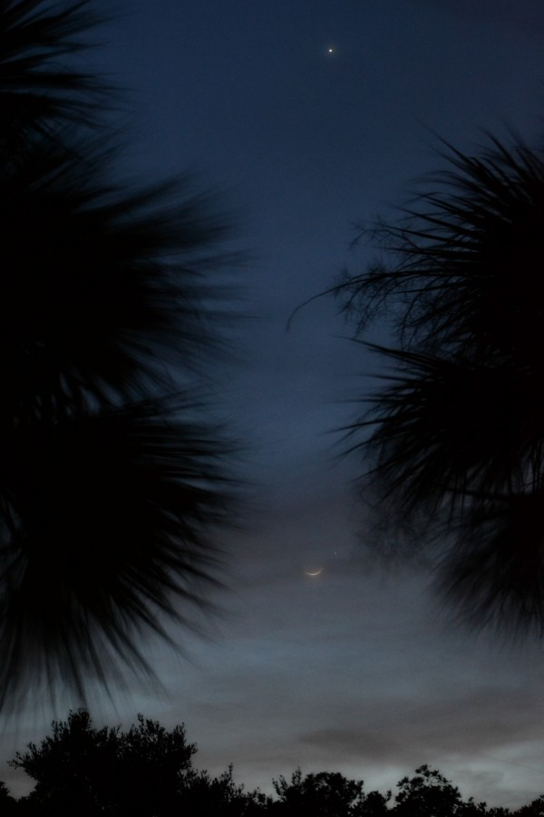KKing caught the planets and moon on March 21 from Englewood, Florida.