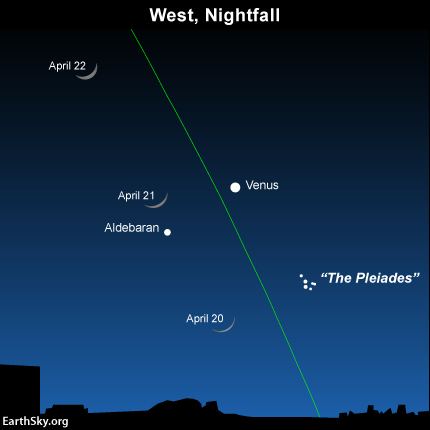 If you miss the young moon on April 19, try again as the waxing crescent moon swings close to the Pleiades cluster on April 20, and the star Aldebaran on April 21. Fortunately, the moon will set early, leaving dark skies for the April 2015 Lyrid meteor shower. The green line depicts the ecliptic.