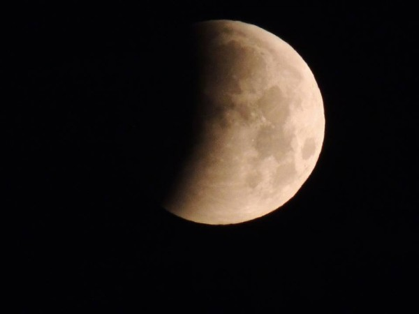 Beginning stage of April 4, 2015 eclipse from Becky Priest.
