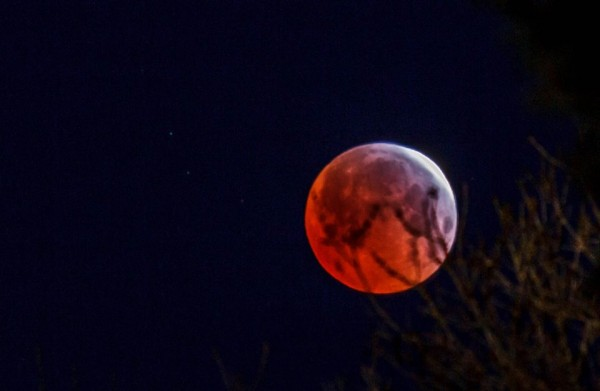 April 4, 2015 total eclipse of the moon as captured by Steven Louie in Colorado.