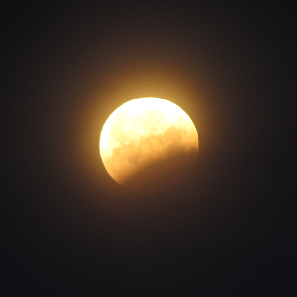 Spencer Mann in Davis, California captured this shot of a partial phase of the eclipse.