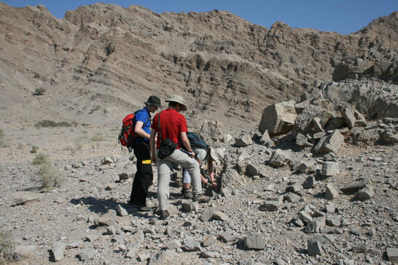 Research team collecting rocks from the United Arab Emirates. Image Credit: D. Astratti.