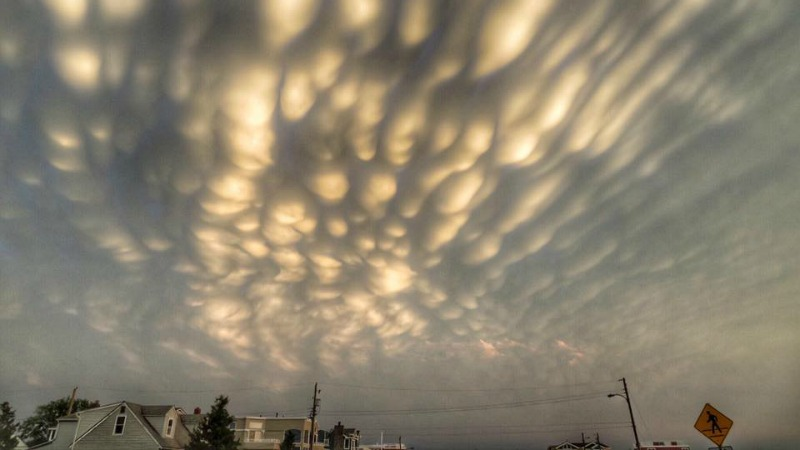 Mammatus clouds in New Jersey, lit by the sun from beneath.