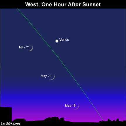 The moon will be moving up past Venus in the coming days.