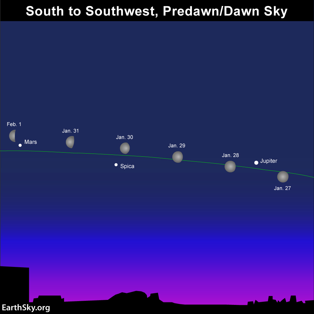 See 5 bright planets at once!   Astronomy Essentials   EarthSky