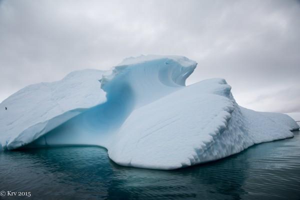 Iceberg near Bransfield Strait by Kjell Rune Venaas.