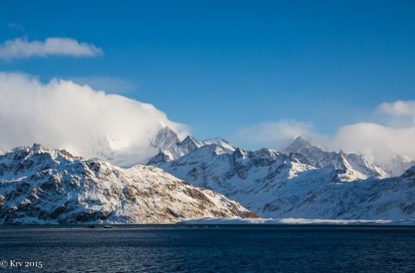 Grytviken at South Georgia Island, by Kjell Rune Venaas.