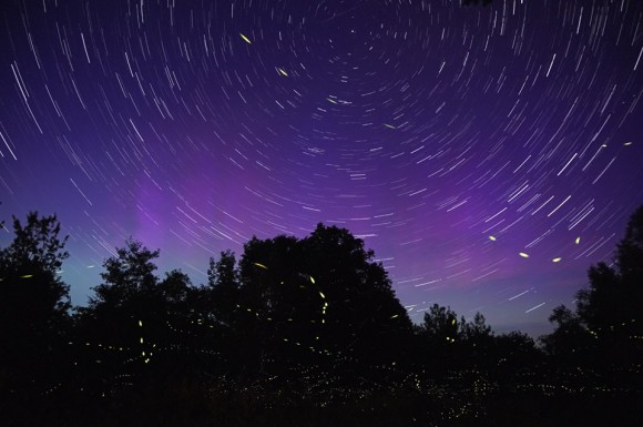Fireflies and aurora, June 22 in Milo, Maine. Wilderness Vagabond wrote,