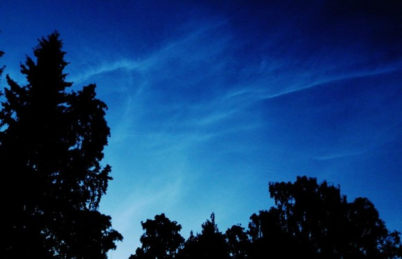 Trees silhouetted below shining clouds high in dark blue sky.