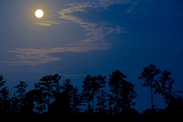 Ken Christison in North Carolina caught this beautiful image of the moon Tuesday morning, June 2.