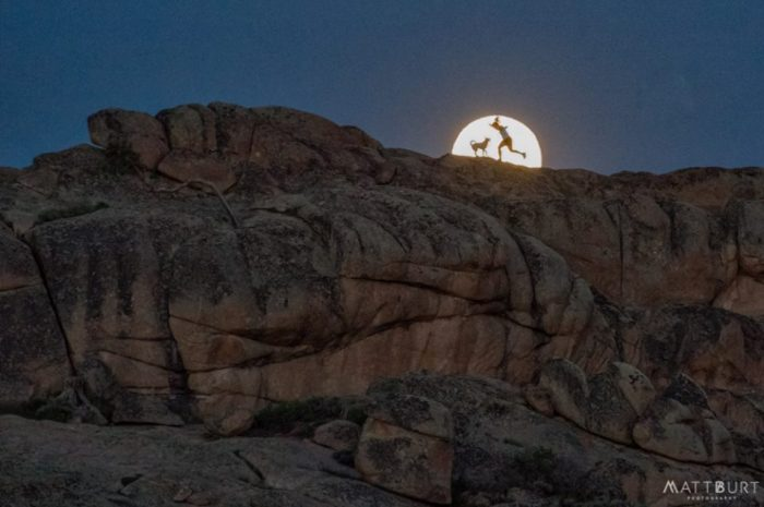 Full moon on June 2, 2015 at Hartman Rocks, Gunnison, Colorado, by Matt Burt.