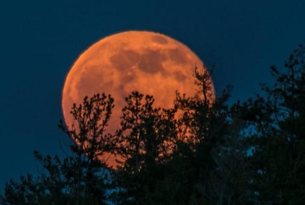 June 2 full moon from Joe Randall in Colorado Springs, Colorado.