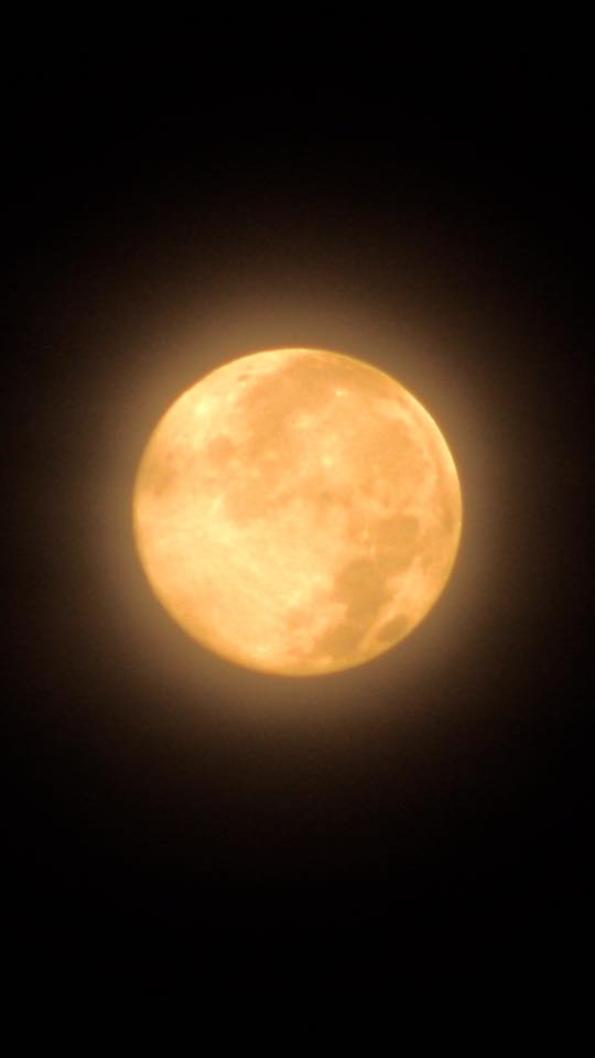 Full moon setting on June 3, 2015 from Jenney Disimon in Sabah, North Borneo.