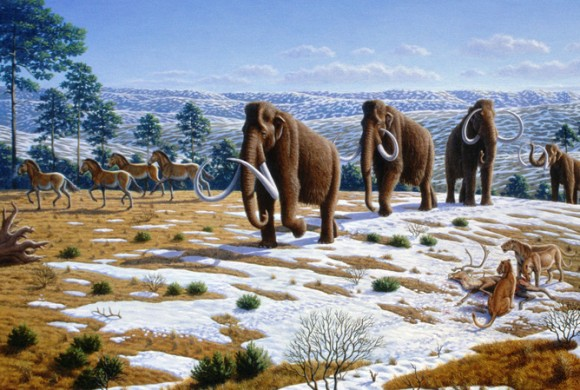 Large animals from the Pleistocene Epoch. Image credit: Public Library of Science/Wikimedia Commons