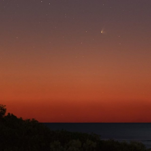 View larger. | Comet C2014 Q1 (PANSTARRS) Colin Legg on July 15, 2015, from Australia.