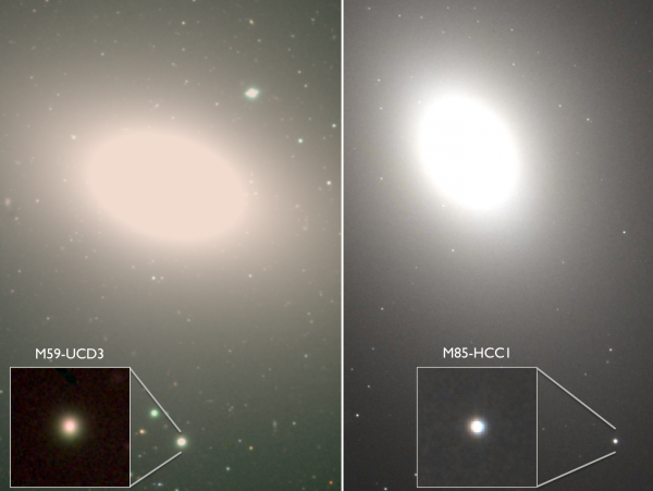 View larger. | Two undergraduate students in astronomy have discovered two ultra-dense galaxies (insets).  The galaxies are orbiting larger host galaxies. The compact systems are thought to be the remnants of once normal galaxies that were swallowed by the host, a process that removed the fluffy outer parts of the systems, leaving the dense centers behind. Image via A. Romanowsky (SJSU), Subaru, Hubble Legacy Archive