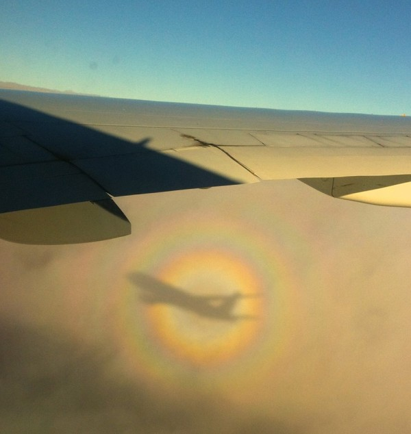 Photo by Judy Sweeny. It's an airplane glory - shadow of the plane with a halo of light around it - which she took out the window flying from Addis Ababa to Dubai.