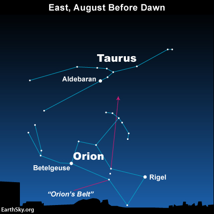 2015 a great year for the Perseids! 2015-august-before-dawn-orion-taurus