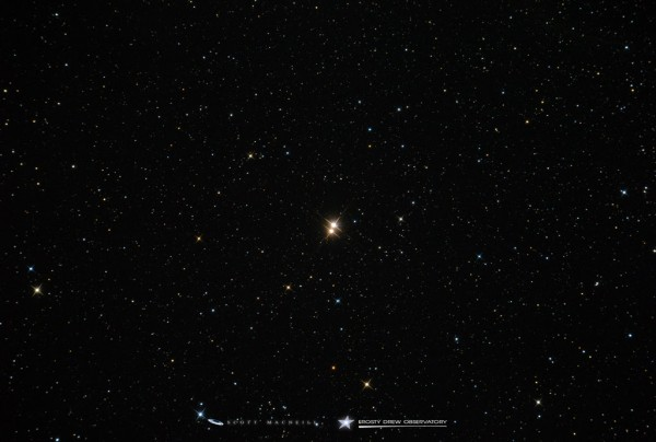 View larger. | 61 Cygni is a double star, captured here by Scott MacNeill at Frosty Drew Observatory, Charlestown, Rhode Island, June 2015.