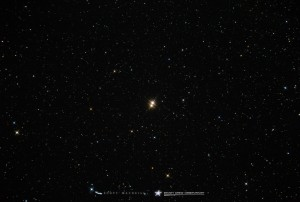 61 Cygni is a double star, captured here by Scott MacNeill at Frosty Drew Observatory, Charlestown, Rhode Island, June 2015.