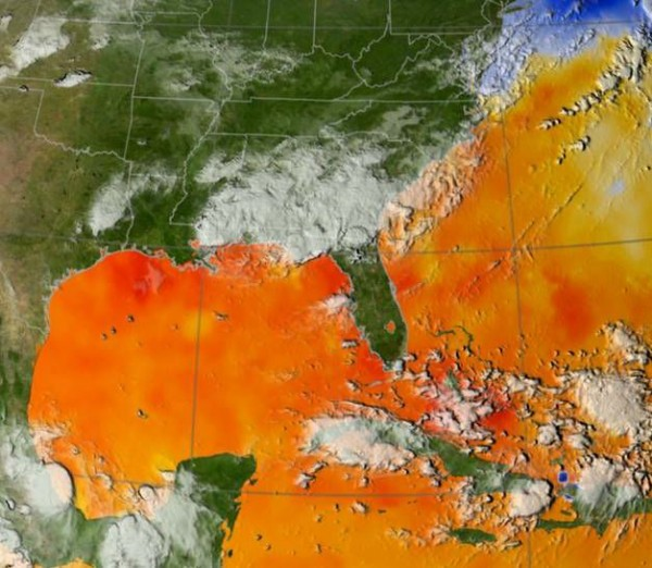 This map of ocean surface temperatures shows how warm waters in the North Atlantic fueled Hurricane Katrina. NASA and UCI researchers have found that the same conditions heighten fire risk in the Amazon basin. Image credit: Scientific Visualization Studio, NASA's Goddard Space Flight Center